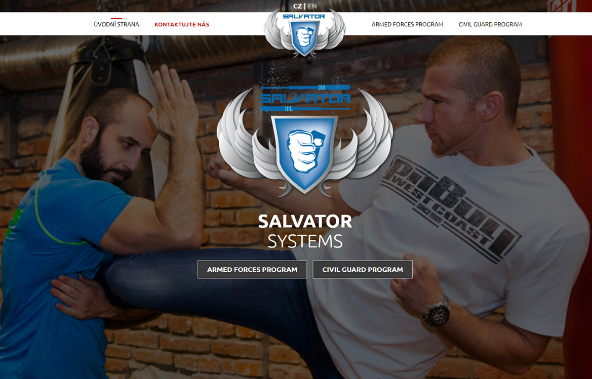 SALVATOR SYSTEMS - screenshot